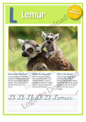 L: Lemur