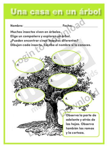110469S03_CienciasdelavidaUnacasaenunárbol01