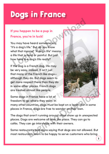 Dogs in France