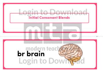 Initial Consonant Blends (Landscape 2/page)