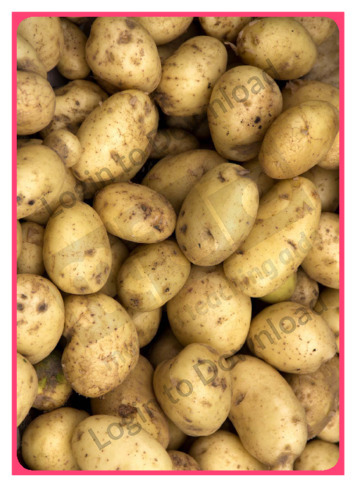 Photo Activity: Potato