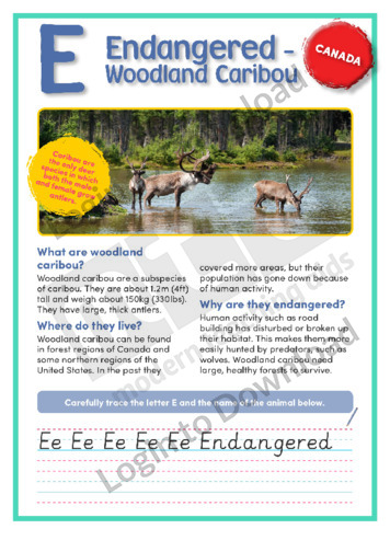 E: Endangered: Woodland Caribou