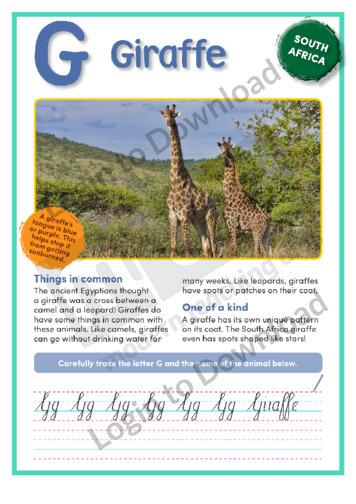 G: Giraffe