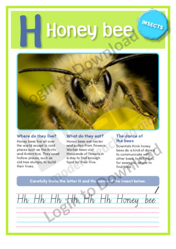 H: Honey bee