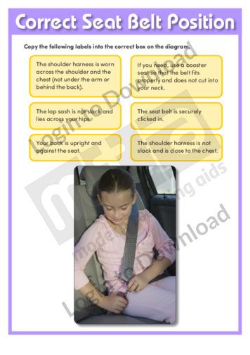 Correct Seat Belt Position