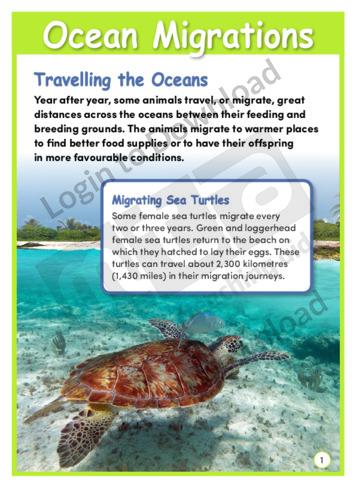 Ocean Migration