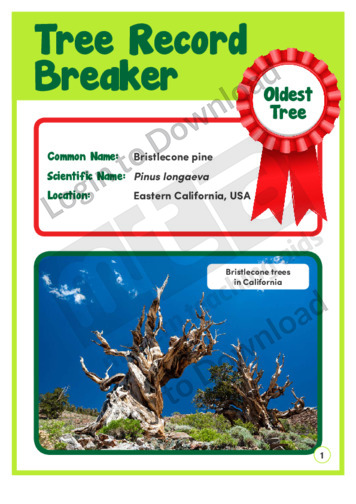 Tree Record Breaker 1
