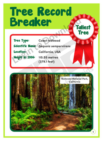 Tree Record Breaker 2